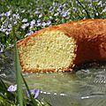 Dessert : gâteau au yaourt moelleux