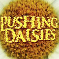 Pushing Daisies (saison 2)
