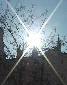 Soleil matinal_Paris