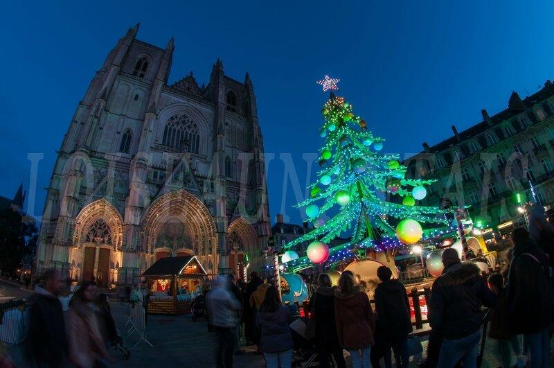 Cathédrale sapin Noël 2017 (5)