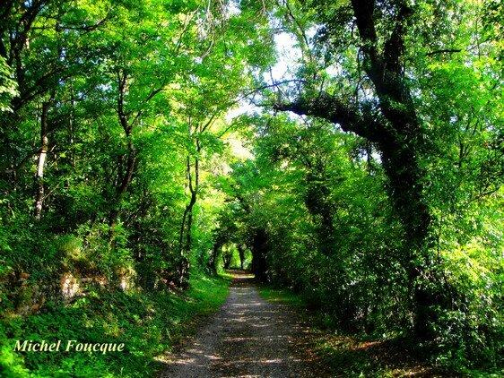 1) sentier pour atteindre le belvédère, le parcours de santé et les ruines du château à Pusignan