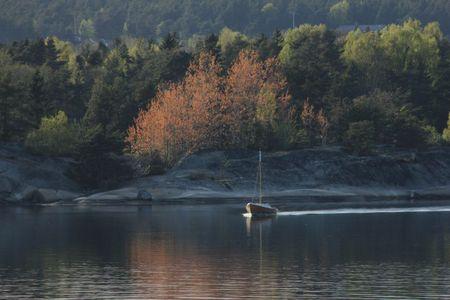 Båt og vårtrær stor dy sk