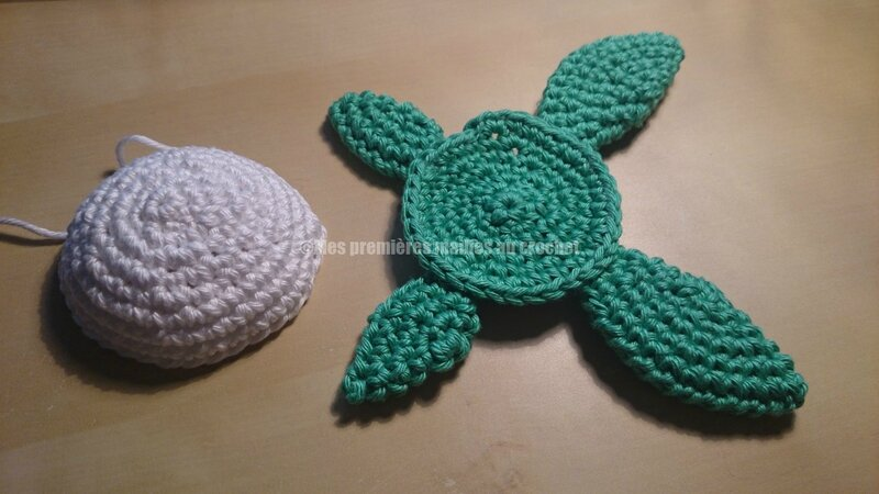 tortue 02