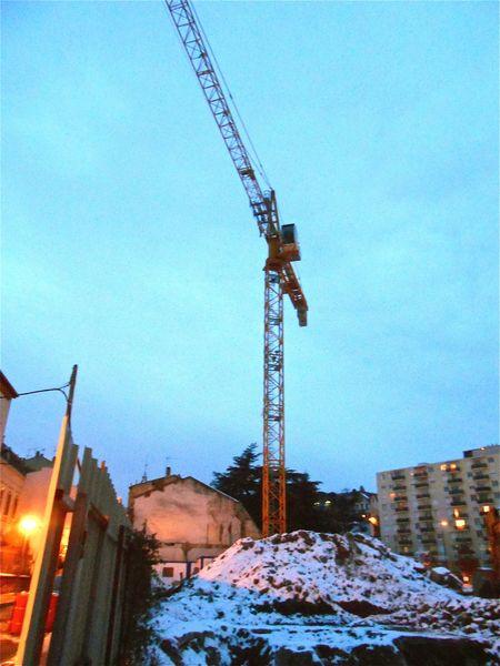 grue 18 janvier 2013 (8)