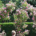 Journée de la rose - abbaye de chaalis