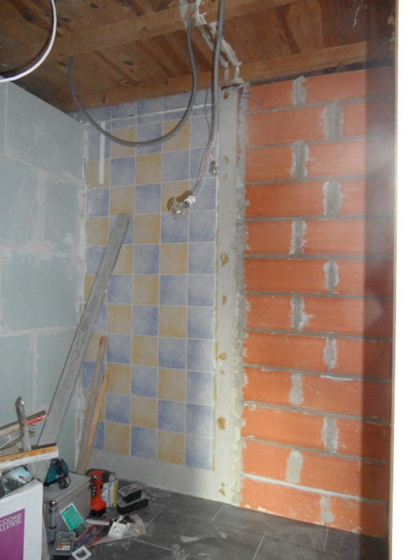 L 39 am nagement du garage 1ere couche de peinture et for Revetement de mur pour salle de bain