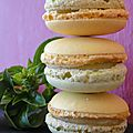 MACARONS CITRON - BASILIC et TAG