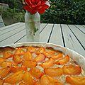 Tarte aux abricots et noisettes