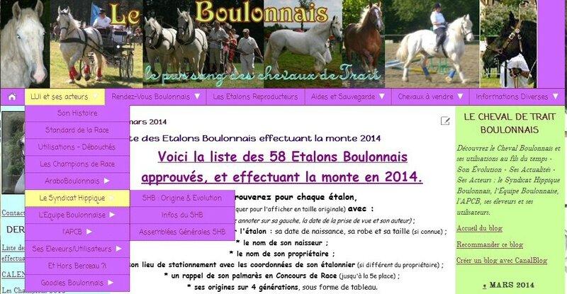 screen Blog - Menu - catégorie