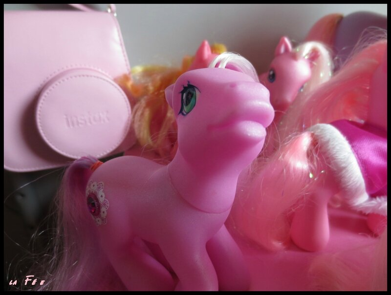 collection petit poney (2)