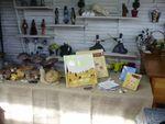 champignons,expo,sculpture,caramique,argile,terre,grès,céramique,céramiste,déco,cadeau,exterieur,émaux,oxyde,gel,jardin,porcelaine, (1)