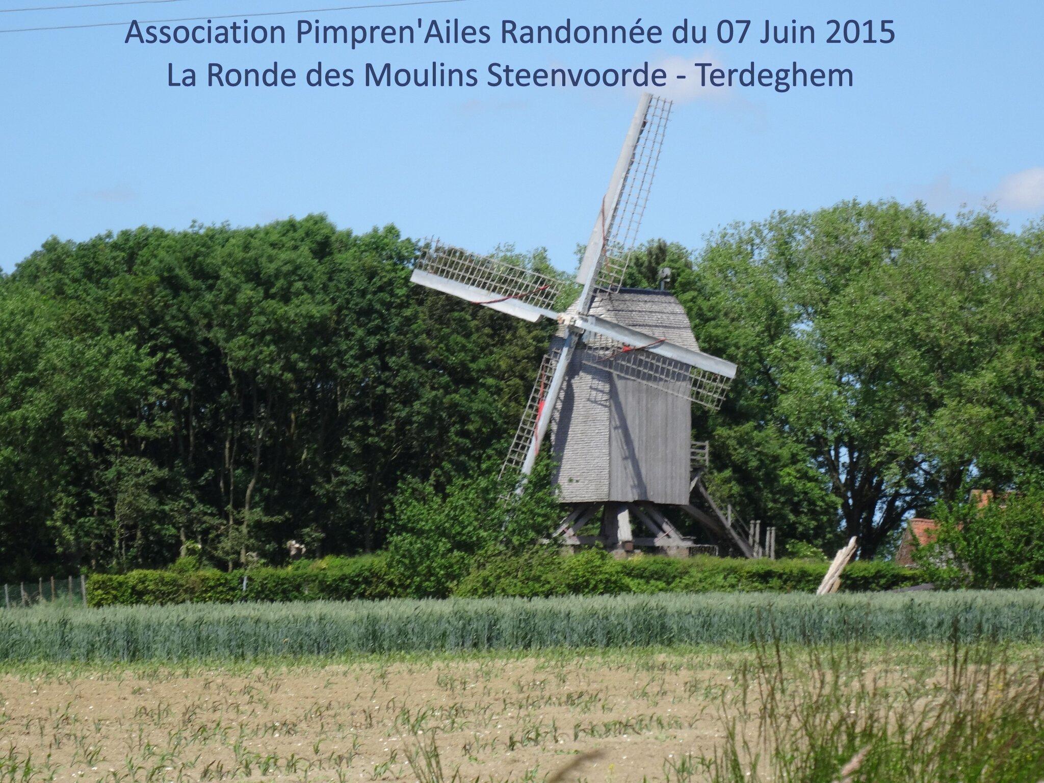Pimpren'Ailes randonne en Flandre Intérieure : La Ronde des Moulins