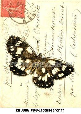 vieux-enveloppe-timbres_~cir0086