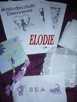 elodie_chez_les_brodeuses_2