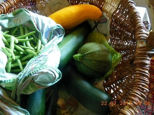 072217_courgettes (2)