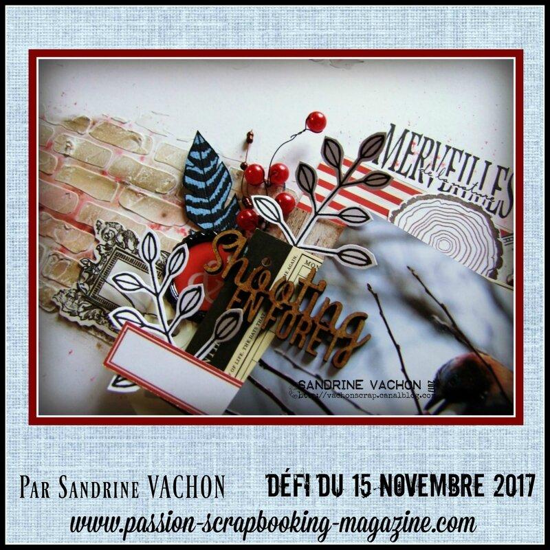 Sandrine VACHON 15 nov défi PS (2)