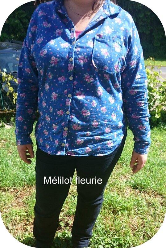 melilot_fleurie_1