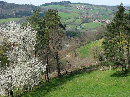 printemps_en_BOurbonnais
