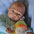 X-80 - bébé 2011 - Lauris - Adopté par Evelyne