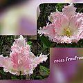 balanicole_2016_05_avril tulipes_38_roses froufrous
