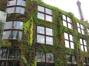 Mur_vegetal_quai_branly