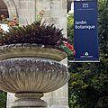 Le jardin public et botanique de Bordeaux