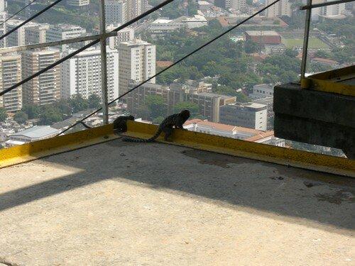 Accueil à Morro da Urca