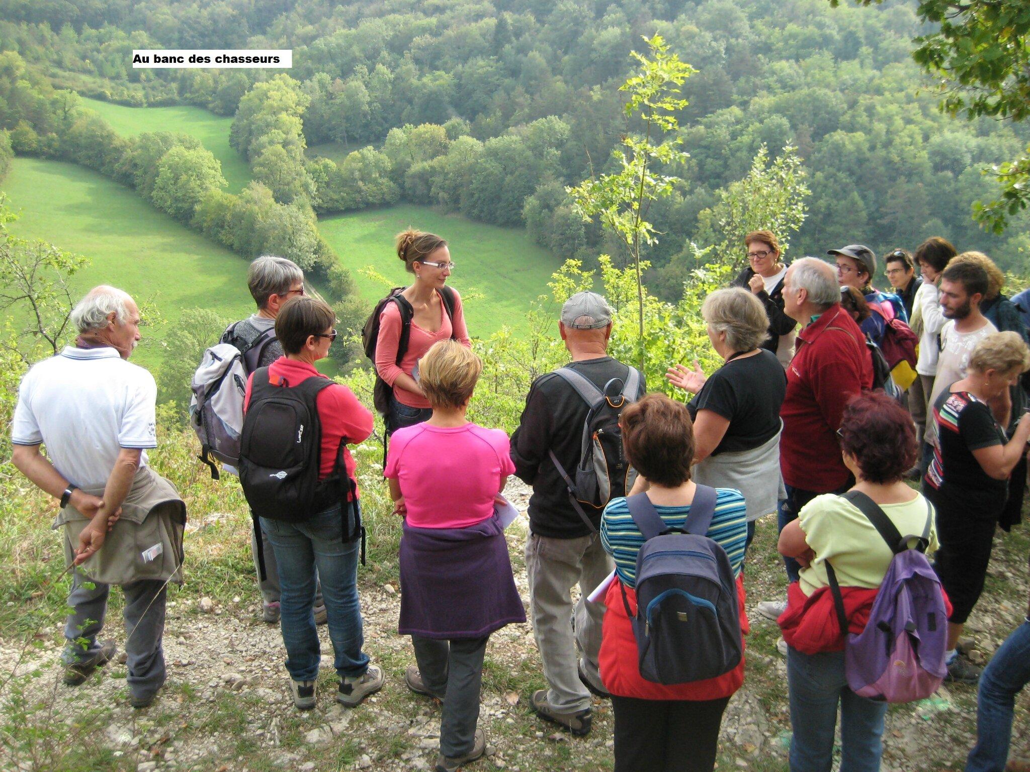 Sortie flore d'Automne du 26 septembre à Treffort : retour sur images