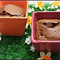 fondant au chocolat (2)