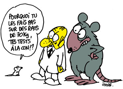 969_antidote_europe_charb