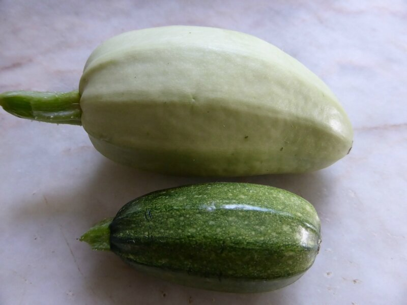 27-courgettes (2)