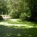 Le Marais poitevin à Coulon