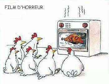 poulet11