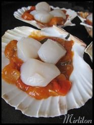 coquille5