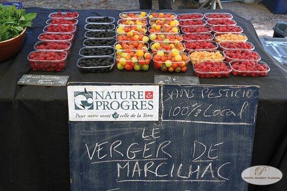 MARCILHAC_sur_CELE_vallee_du_Cele_marche_d_ete_le_verger_de_Marcilhac