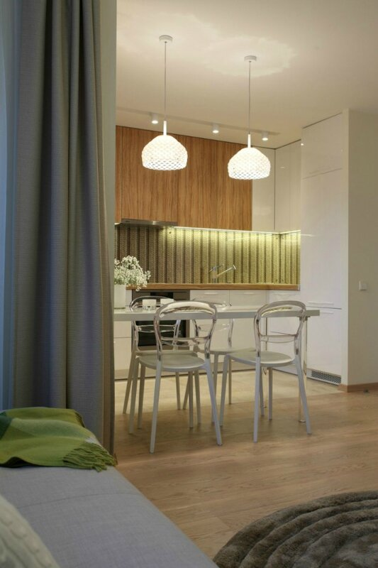 contemporary-small-apartment-9-622x933[1]
