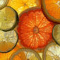 citrus_optimise_45