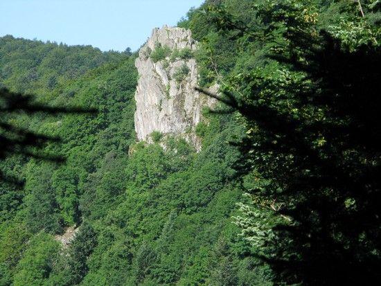 Lac_des_perches_035