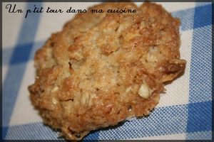 Biscuits_australiens2