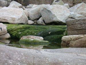 tapis_granit_051224