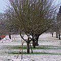 Deuxième attaque de la neige en deux semaines.