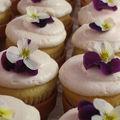 hdwfls07_cupcakes_budget_w609