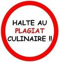 halte au plagiat, logo