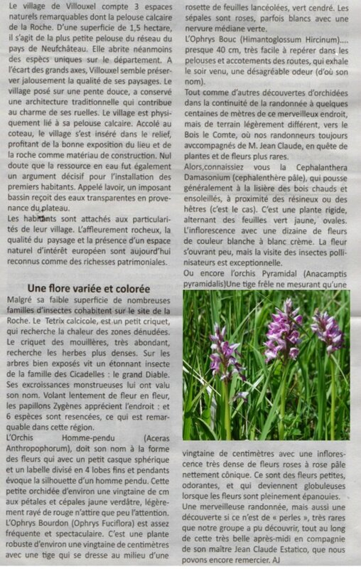 article du 2 juin 2016 (3)
