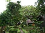 Depuis_notre_bungalow