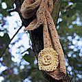 écharpe détail Crochet accessoires