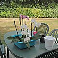L'entretien des orchidées
