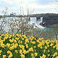 Niagara Falls mai 2011 (12)