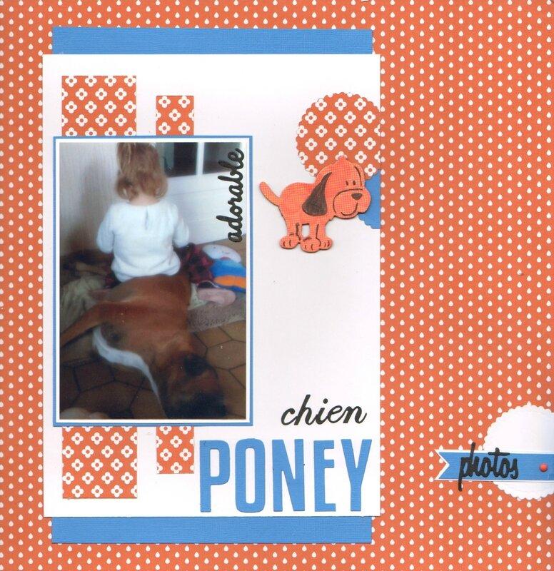 chien-poney