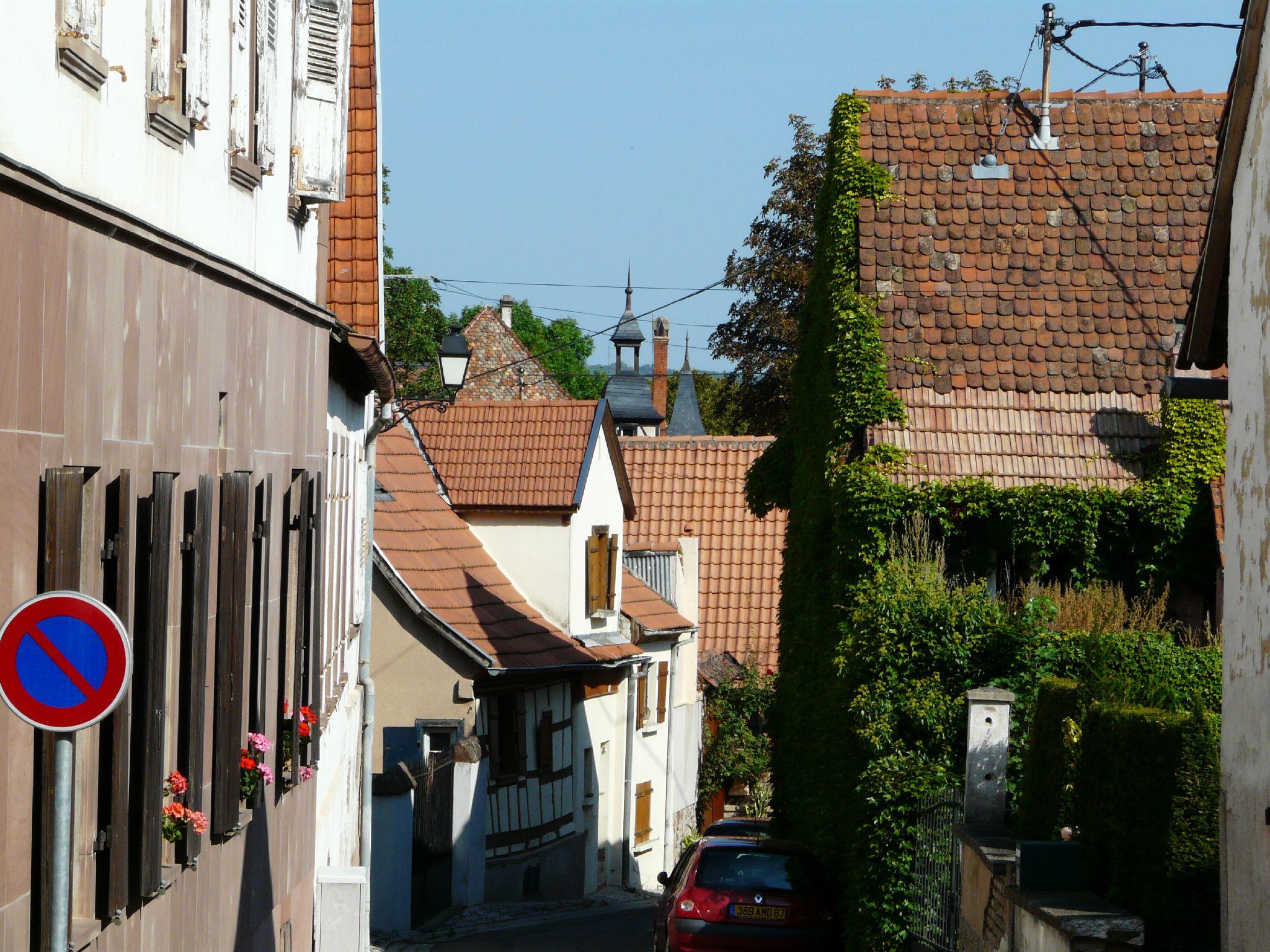 Scharrachbergheim (8)